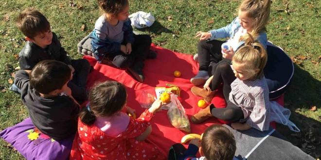 Piknik në natyrë